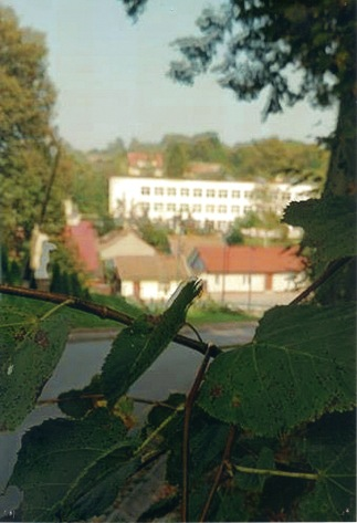 SZKOŁA - Krystian Kaleta